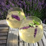 Gin cocktail med lavendel fra egen avl