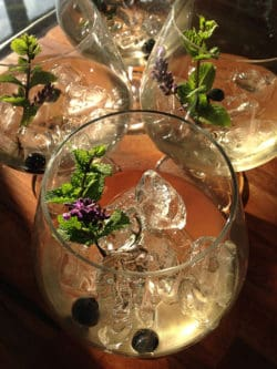 The classic G&T made with woodhill Gin
